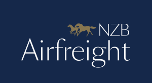 thumbnail_nzb_airfreight-logo_rev_rgb_navy